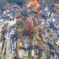 恒見鉱山の岩肌