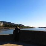 竹馬川曽根干潟野鳥カメラマン