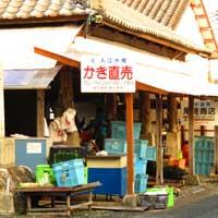 恒見牡蠣カキ直売所