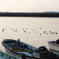 柄杓田漁港の早朝